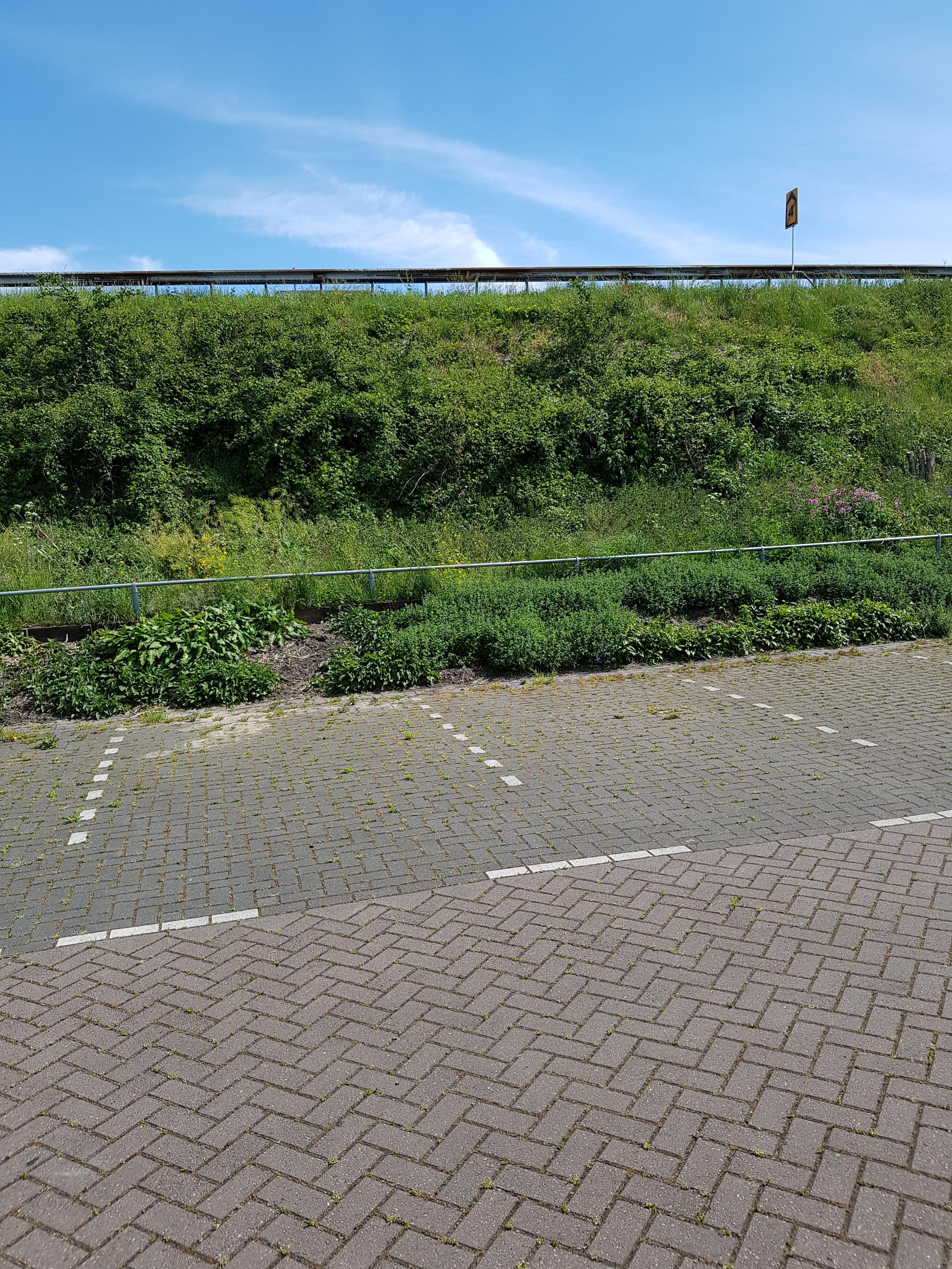 2171AL Sassenheim, Nederland, ,Bedrijfsruimte,Koop,Rijksstraatweg ,1413